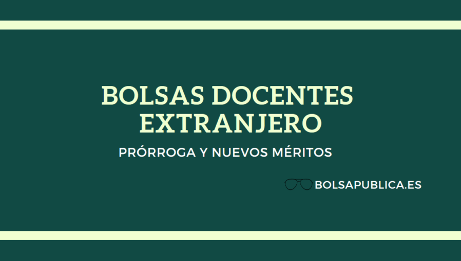 bolsa profesores prorroga extranjero portugalmaestros paises bajos
