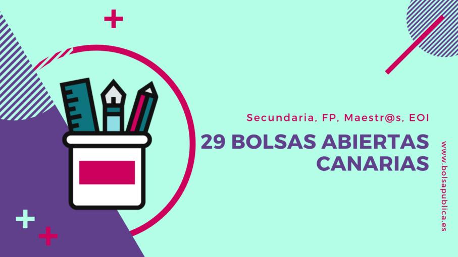 Apertura de 29 bolsas docentes en Canarias Bolsapublica.es