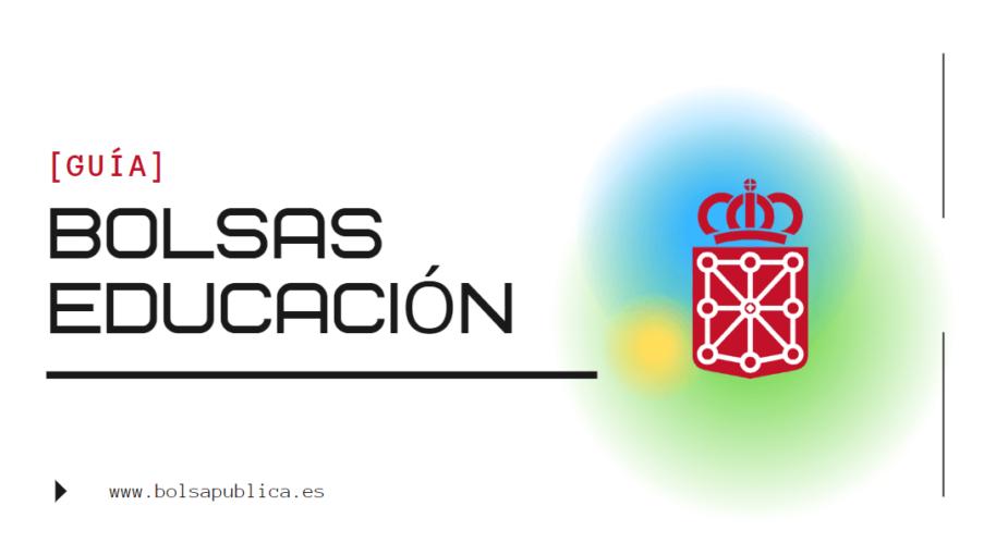 Ayuda bolsas Maestros y Profesores de Navarra