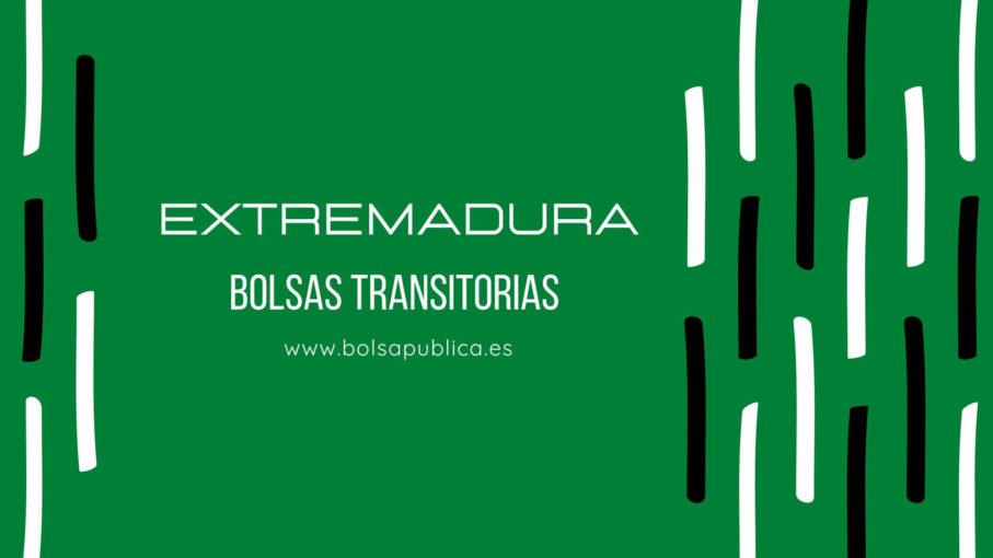 Bolsas docentes transitorias en Extremadura