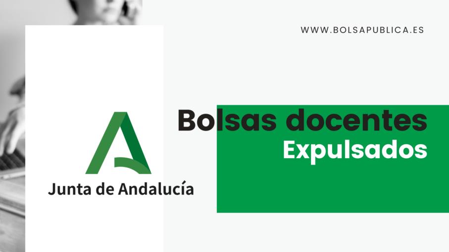 Explulsados de las bolsas de maestros y profesores de Andalucía