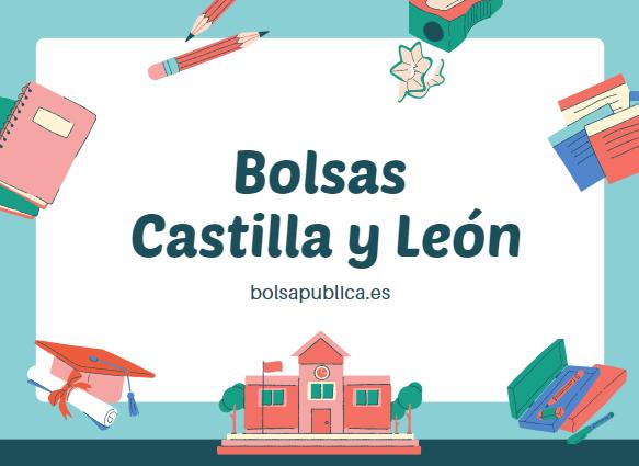 Bolsas para maestros y profesores en Castilla y León 2022